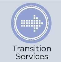 Transition services image